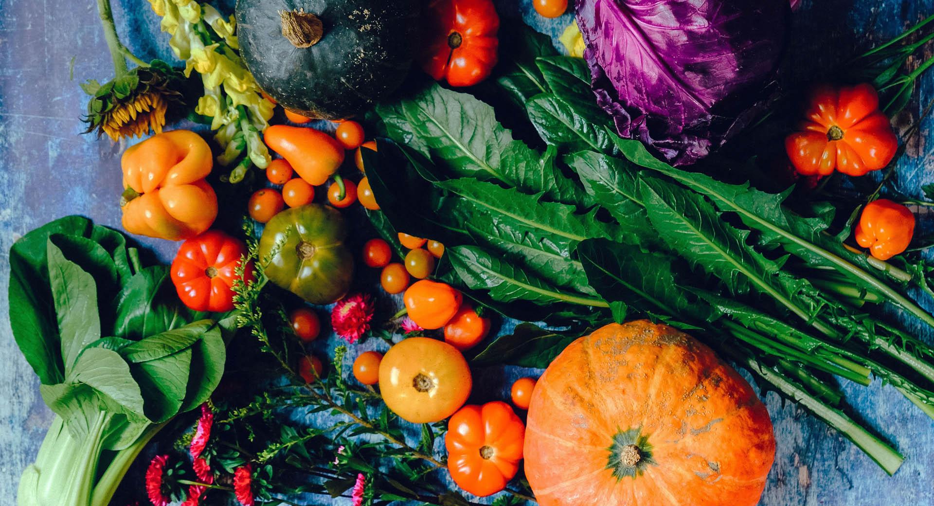 Dr. Scarlett Lewitschnig - Ihre Expertin für Schilddrüse und Komplementärmedizin - gesundes Gemüse für Ihre Darmgesundheit, nach F.X. Mayr für einen gesunden Darm